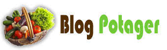 Blog Potager