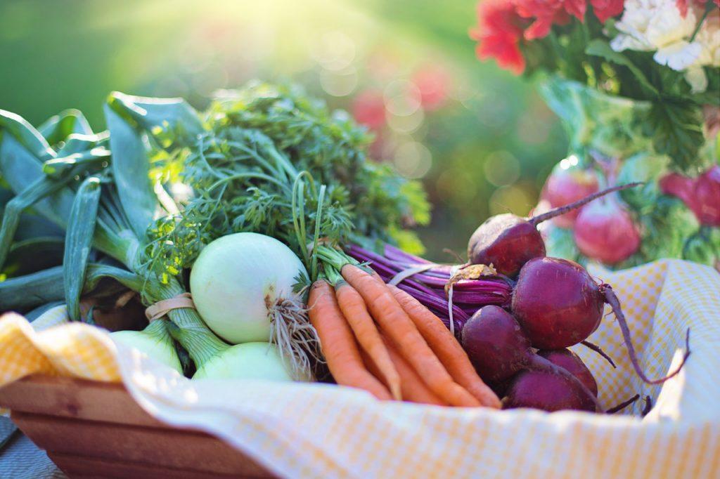 Quels légumes planter sur un balcon potager ?